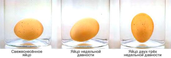 Определение качества и свежести яиц